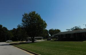 Powell Village